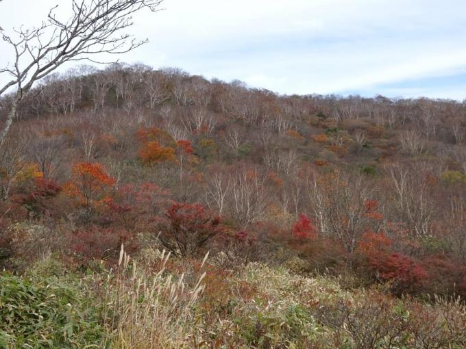 小沼湖畔の紅葉2
