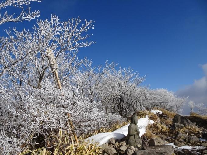 山頂の霧氷2