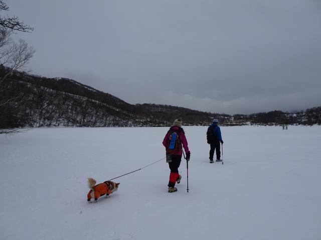 冬季限定氷上歩き