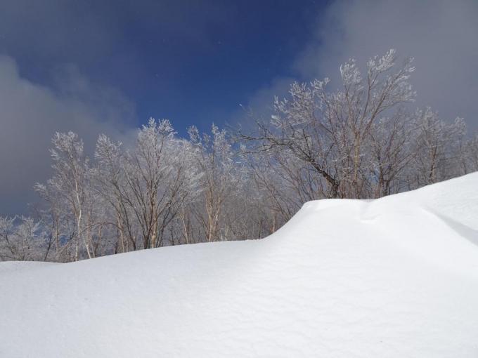 山頂の霧氷4