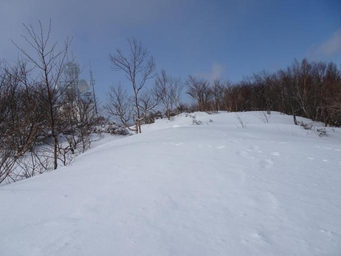まっさらな雪の上を