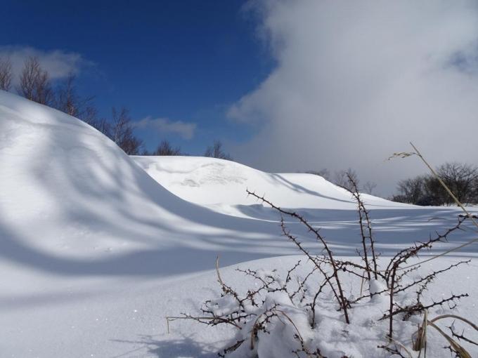 盛り上がる雪
