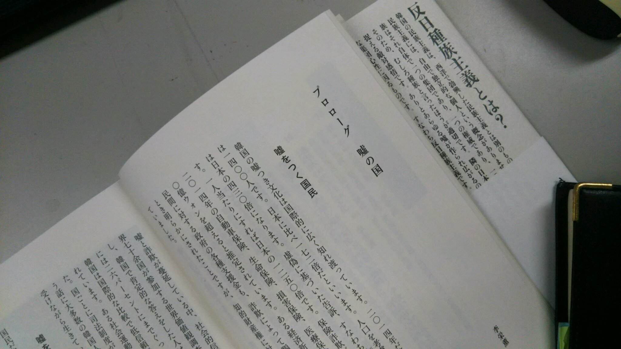 DSC_0170 反日種族主義。本文。