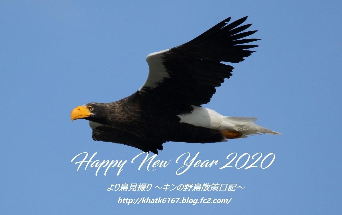 kin-2020-01-01 100000000-2
