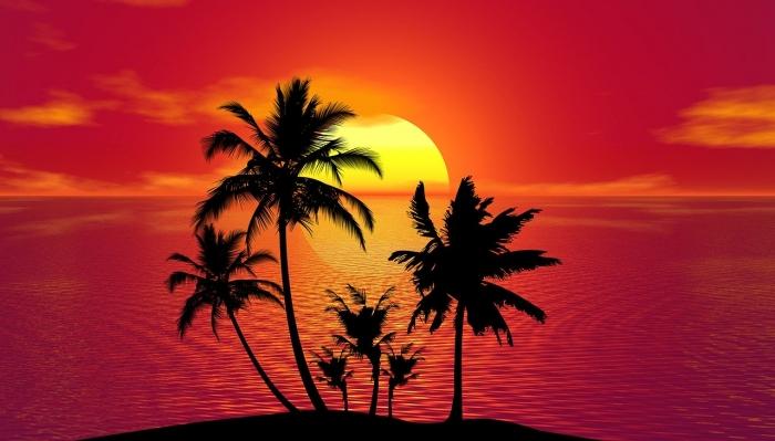 tropical-1651423_1280.jpg