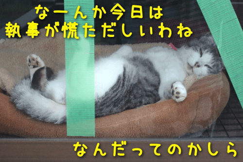 2019101316044939f.png