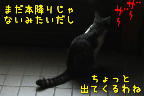 20191014193816a5a.png