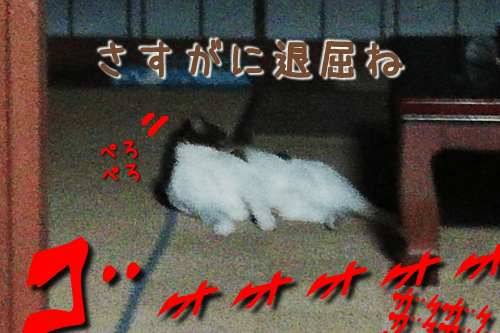 201910141938248a6.png