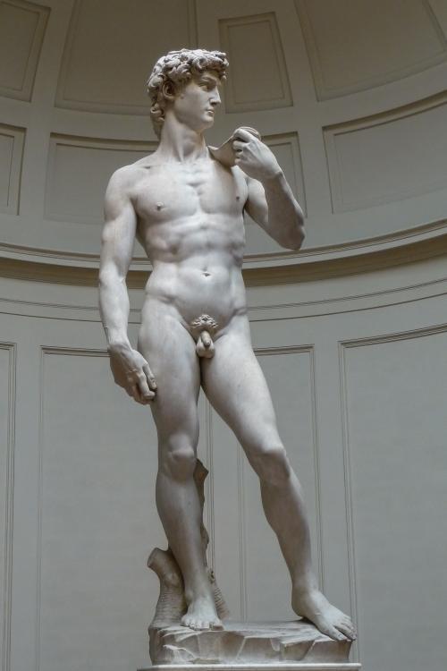 _David__by_Michelangelo_JBU0001_convert_20191120133440.jpg