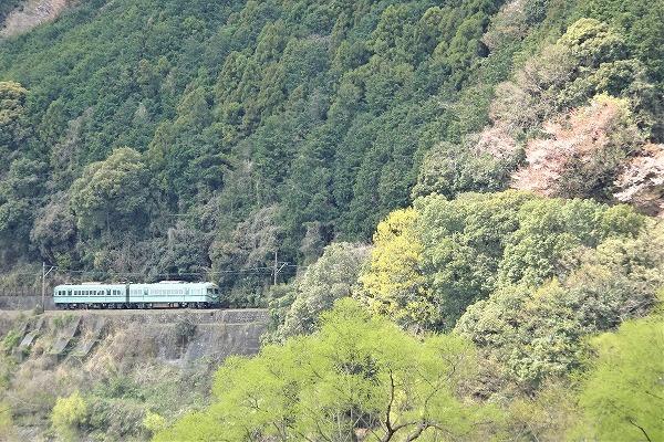 大井川神座 (3)