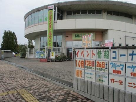IMG_2699 (2)