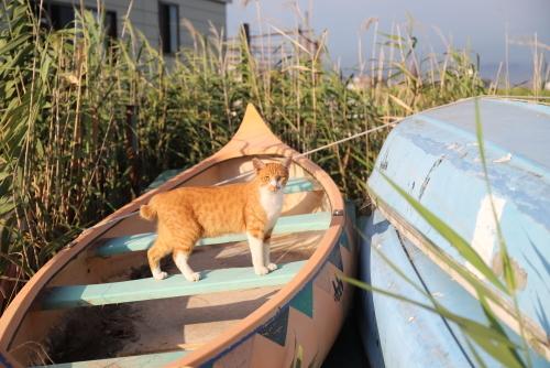 ボートに立つ