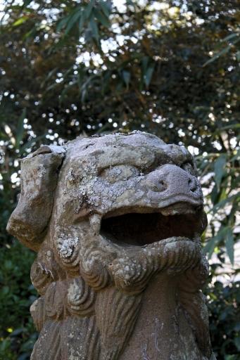 小田神社の狛わんこ