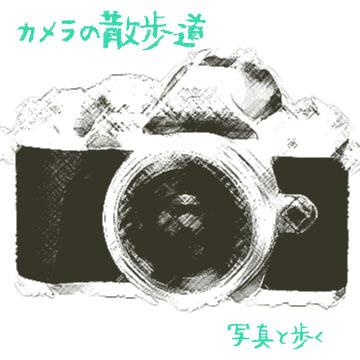 285_title.jpg