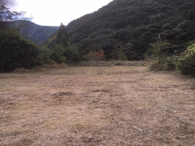 草刈り終了