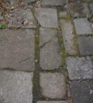 200215-06.jpg