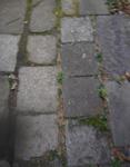 200215-07.jpg