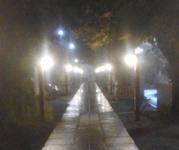 200216-03.jpg