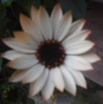 200221-01.jpg