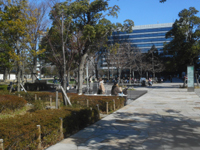 200303-02.jpg