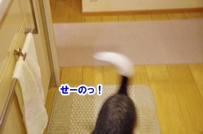 かみなり 3