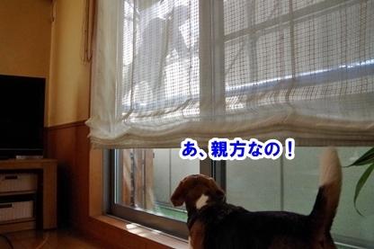 高圧洗浄 2