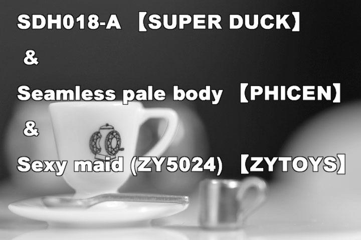 SDH-018A0101.jpg