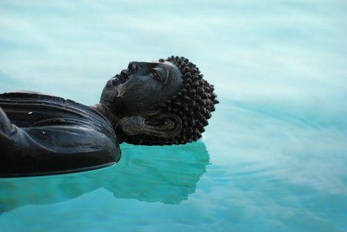 buddha-509372_960_720.jpg
