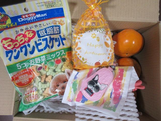 191111up01あずきちゃんよりおうちで採れた柿と一緒に沢山のプレゼント