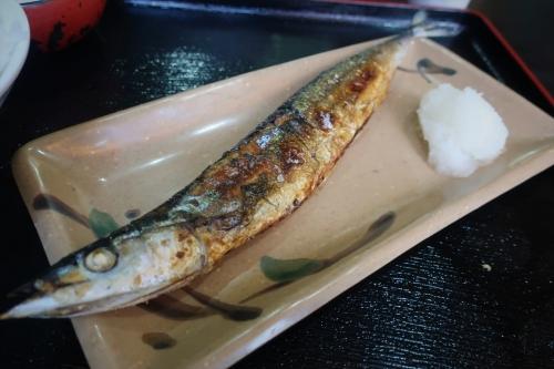 なか川⑥ (17)_R