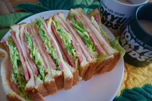 レタスとビアソーセジのサンドイッチ (1)_R