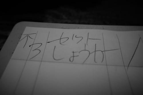 恵大苑⑨ (11)_R