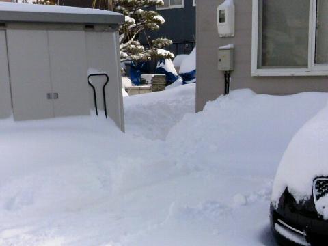 雪が多いというか平年並み