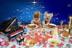 2011年12月23日②クリスマスパーティ-openingusize