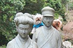 2012年01月04日旅行#3 河津七滝2012年01月03日 ②七滝散策 (18) openingsize