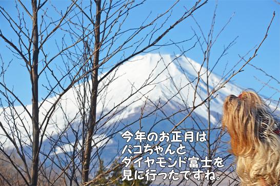 2019年12月30日からの正月旅行-2019年12月31日②富士山見納めの裸ん歩 (14)