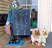 2012年03月05日~06日旅行#4伊豆迎賓館(りれらのお誕生日旅行) (1)openingsize