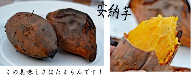 2019年12月30日からの正月旅行-2020年01月02日⑥焼き芋だ大好き (1)