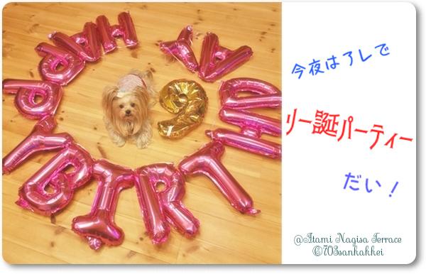 ⑪2020年02がつ19日リー誕パーティーの準備ちゅう (2)blos