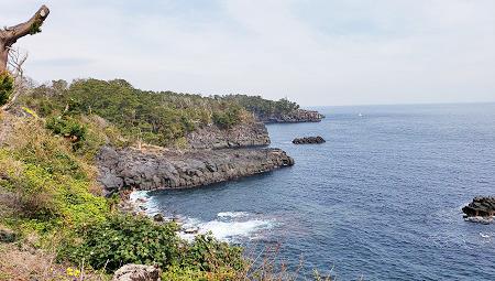 20200220城ヶ崎海岸ピクニカルコースblos (1)