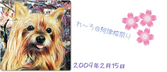 20200306_200306_0002.jpg