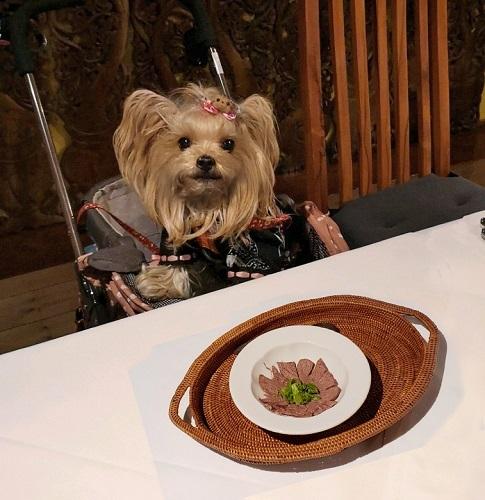 2020年02月20日四季の蔵⑥夕食は個室で (15)blos