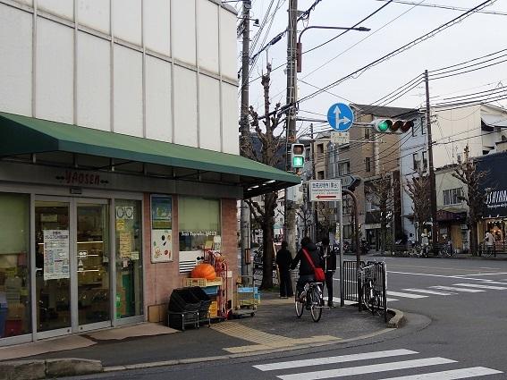 yaosen.jpg