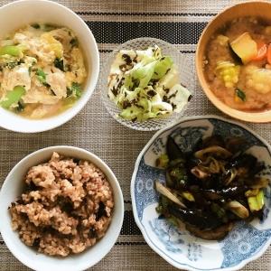 野菜のおくすり定食20200215