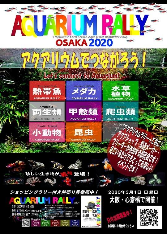 rallya41_20200105152603d9e.jpg