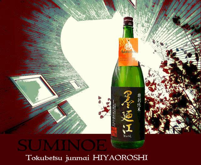 hiyasumi.jpg