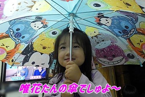 唯花たんの傘