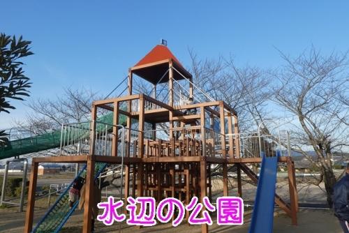 水辺の公園