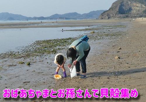 貝殻集めに来ていたおばあちゃまとお孫さん
