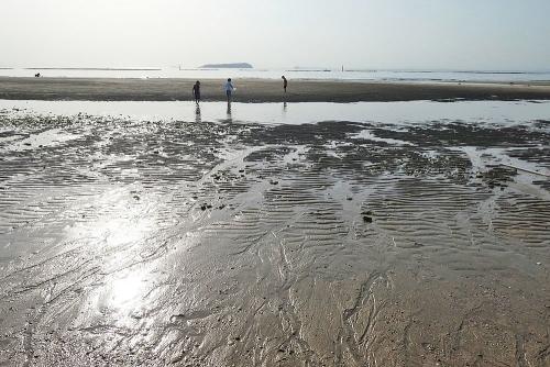潮の引き跡が